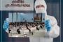 معرفی طرح آجر به آجر ویژه بانوان سازمان